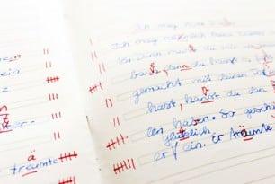 Lese-Rechtschreibschwäche und der Erwerb einer Fremdsprache