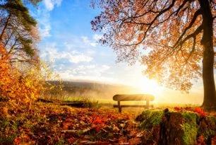 Herbstferien und Zeit für LRS-Testungen